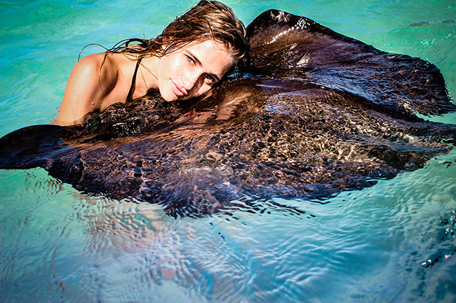 Guests petting friendly stingrays in Antigua